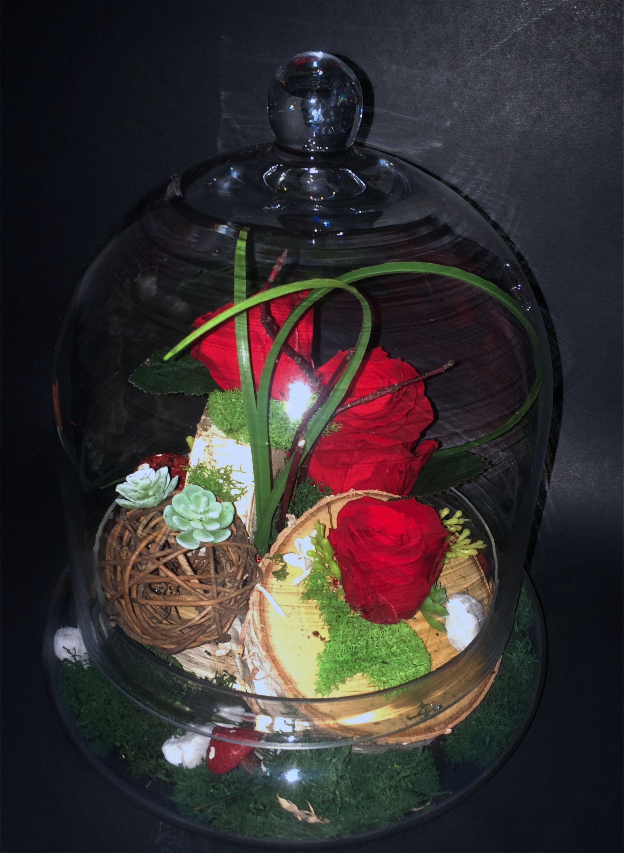 roses en cloche fleuriste le chrysanth me. Black Bedroom Furniture Sets. Home Design Ideas